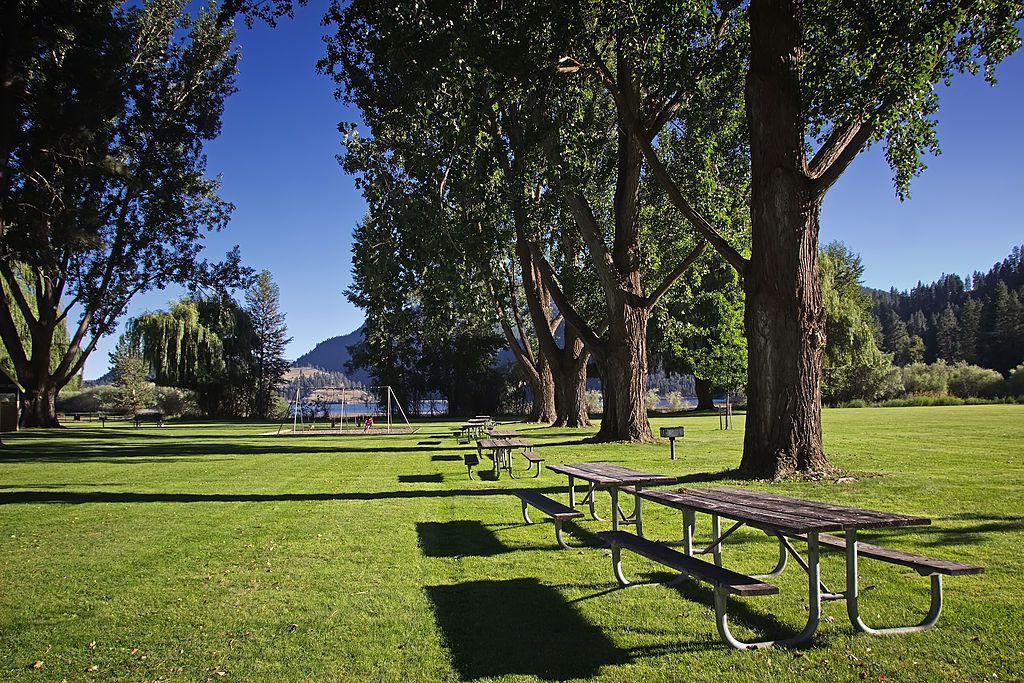 Parks Background