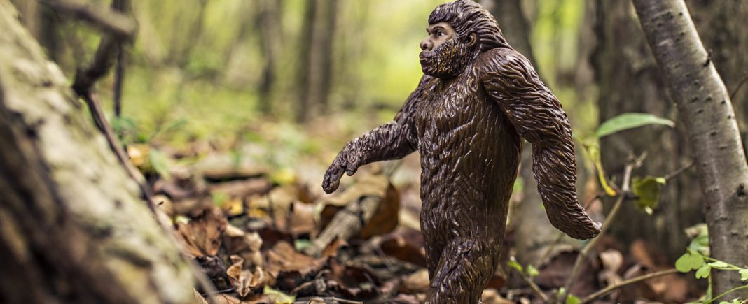 monster background nature - walking animal strong