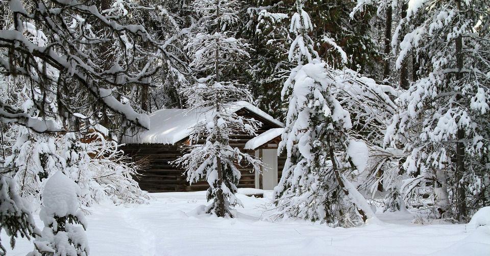 Winter Scene Pictures