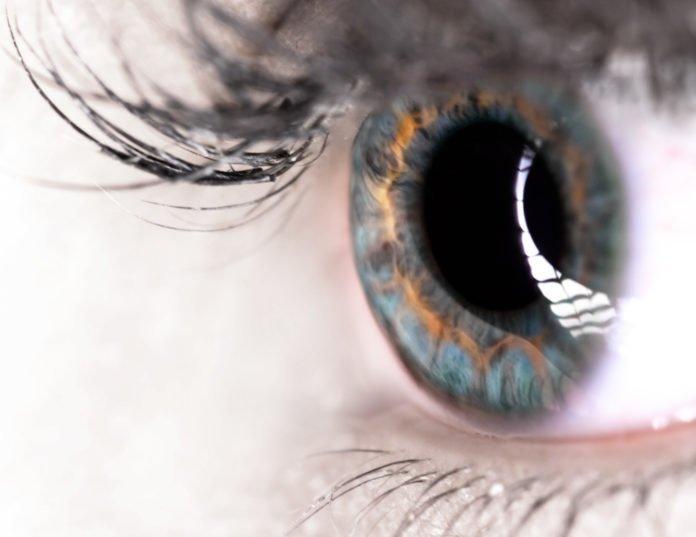 Visual Elements - Eye of a Woman